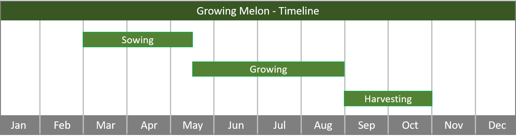 how to grow melons timeline