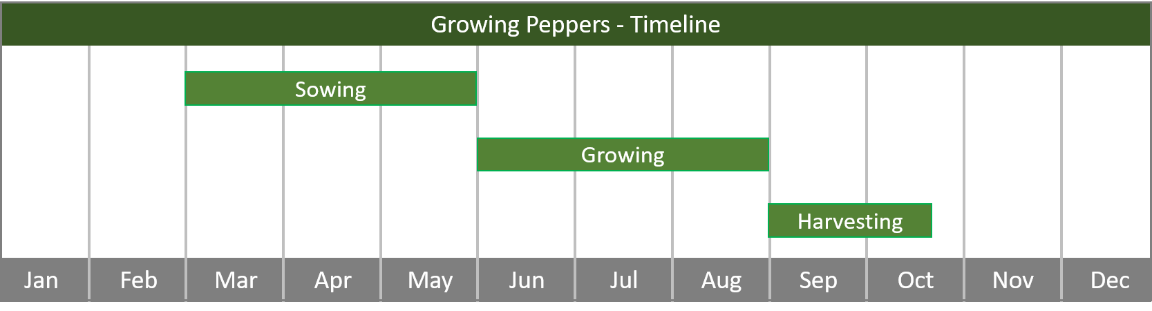 how to grow peppers from seed to harvest - timeline