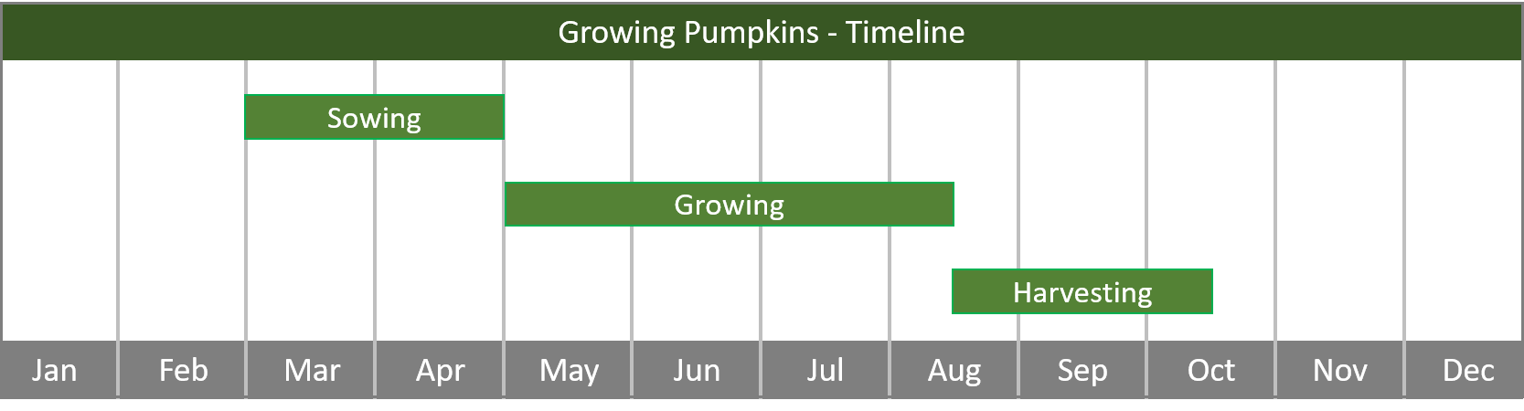 how to grow pumpkins from seed to harvest - timeline