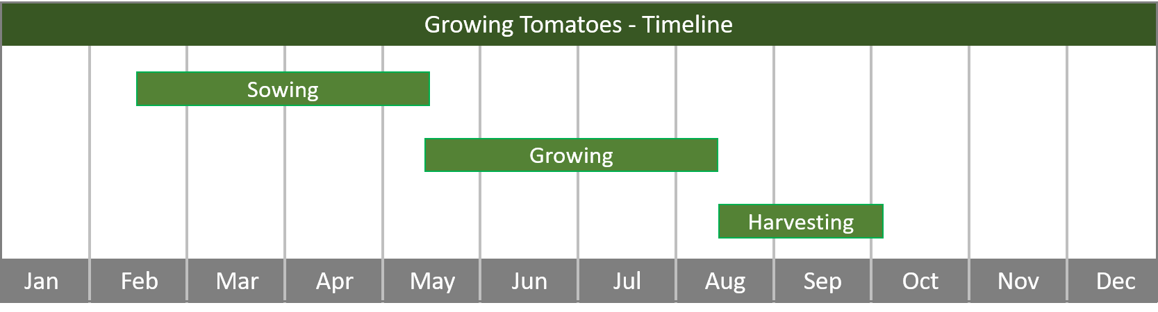 how to grow tomatoes from seed to harvest timeline