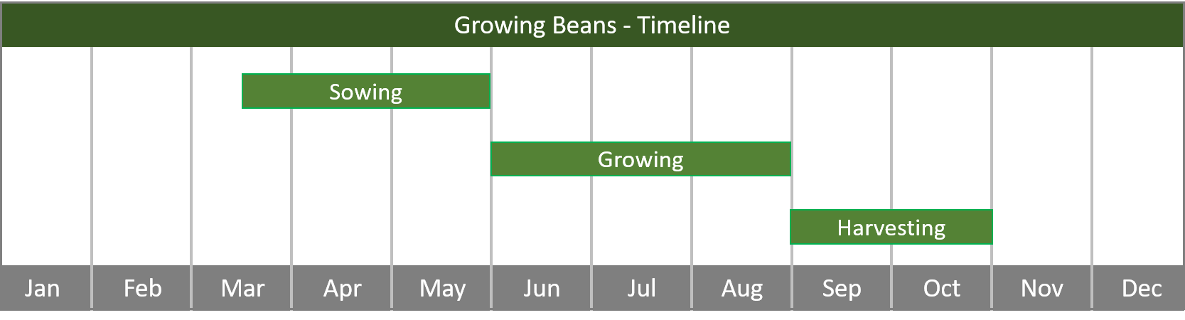 how to grow beans from seed to harvest at home timeline