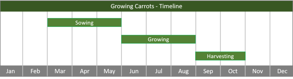 how to grow carrots from seed to harvest timeline