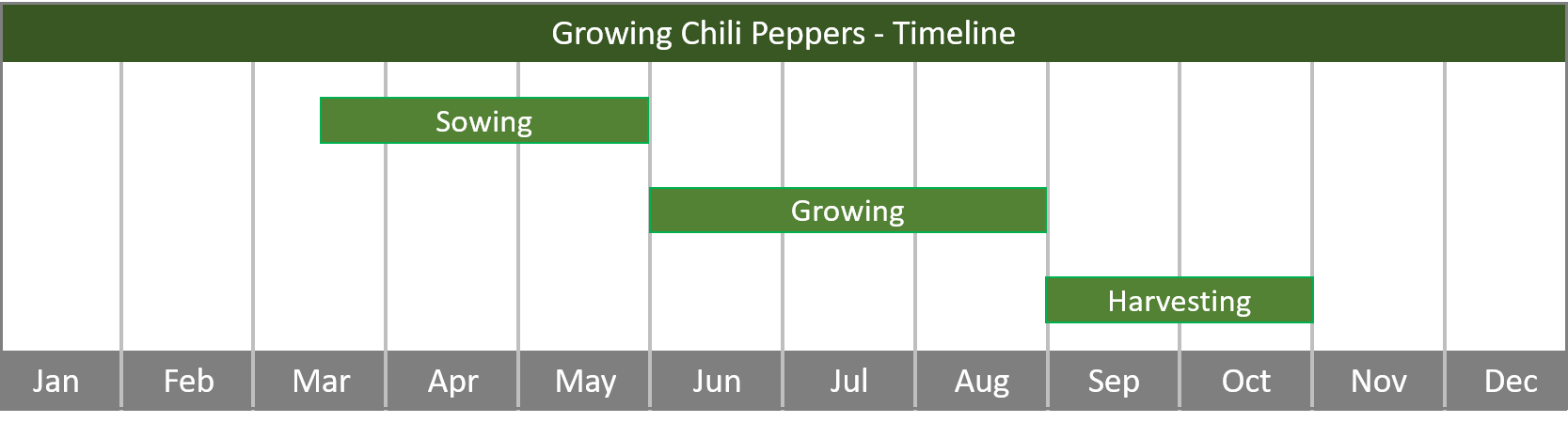 how to grow chili peppers from seed to harvest at home timeline