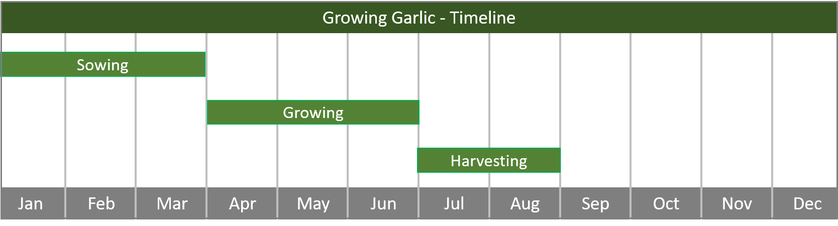 how to grow garlic from seed to harvest timeline
