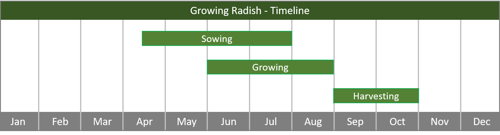 how to grow radish from seed to harvest timeline