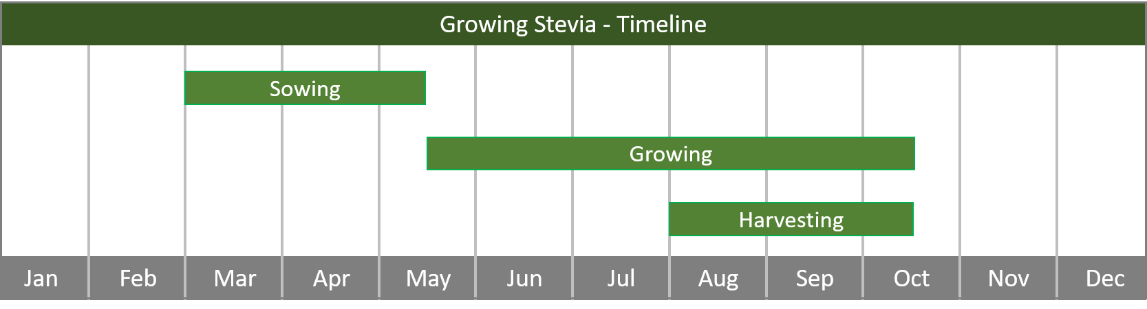 how to grow stevia from seed to harvest at home timeline
